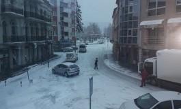 Užas u selu Miričina: U požaru izgorjeli štala i petero teladi